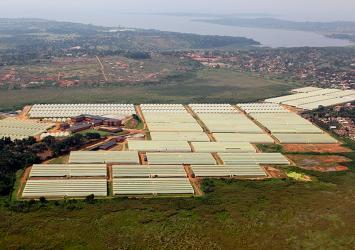 premier-roses-farm-aerial-view