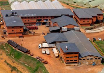 premier-roses-farm-buildings